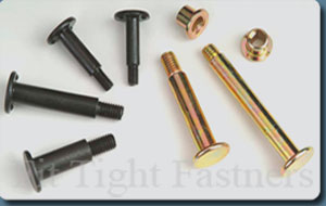 Weld Bolts, Shoulder Bolts, Self Lifting Screws, SEMs Screws, Self Tapping Screws, Y Type Screws, Hex Flange Screw, Machine Screws, Self Lifting Washer Assembly Screws, Screw With Washer Assembly, L&T Screws, L&T Washers, LNT Screws, LNT Washer, Tri lobular Thread screws, Terminal Screws, Torx Head Screws, Taptite Screws, Combination Head Screws, Specialized Fasteners Manufacturer In INDIA, Dry wall screw, Wood screw, Chip board screw, Btb screw, Pt thread screw, Bt screw, High - low screw, 6-lob screw, Slotted screw, Philips combi Screw, Cheese head screw, CSK screw, Raised head screw, Binding head screw, Spring washer, dome washer, Round head screw, Truss head screw, Star washer, Grub screw, Oval head screw, Screw with washer assembly, Shoulder Bolts, Precise Electronic Screws, Fillister Head Screws, Screw With Serration Head Screws